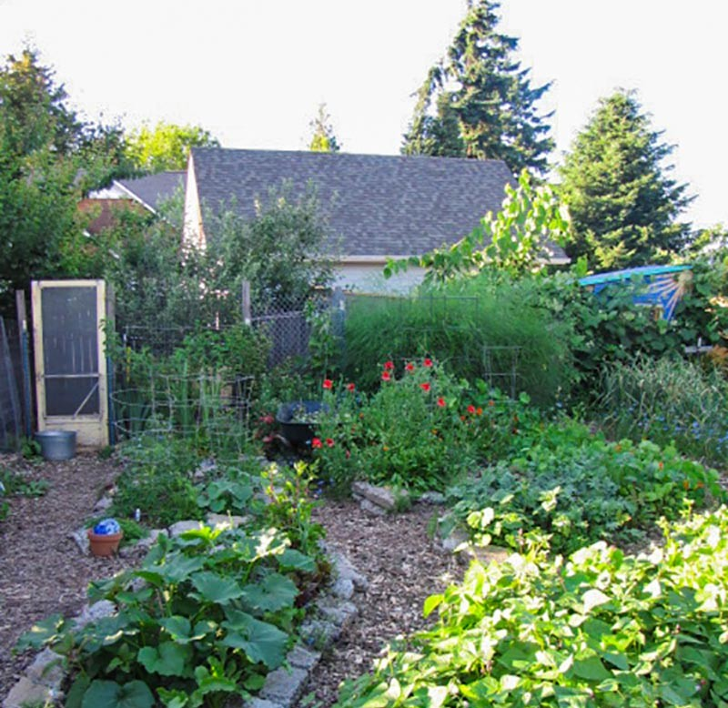 Backyard Permaculture what is permaculture? | permaculture gardening principles