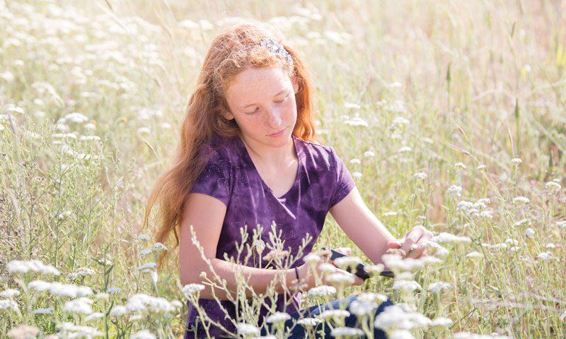 How to Make Yarrow Tea | Yarrow Health Benefits | Herbal Remedies