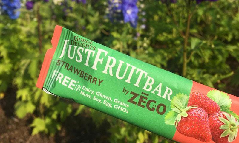 Zego Snacks Allergen-Friendly Fruit Bars Are Nutrition On